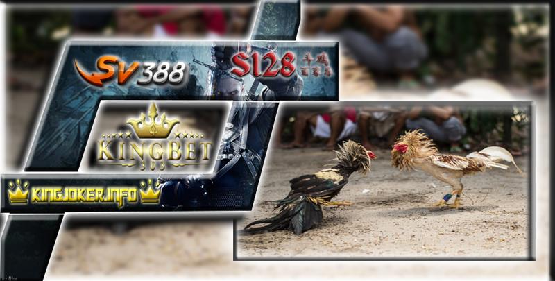 Bandar Sv388 Terpercaya Main Game Terpopuler Adu Ayam Di Sini!