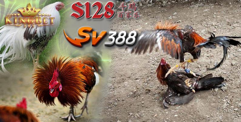 Situs S128 Online